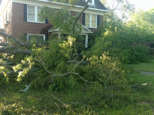Tree Removal, Tree Care, Tree Trimming<br/>Shreveport and Bossier City, LA